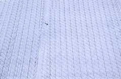 Snow Covered Hop Field (Aerial Photography) Tags: by ei obb 167100721 17021991 ackerbau bavaria bayern beilngries deutschland farbe fotoklausleidorfwwwleidorfde fotoklausleidorfwwwleidorfaerialcom germany grafik hopfen landscapeandnature landschaft landschaftnatur landwirtschaft luftaufnahme luftbild p1 reihen schnee schwarz stimmung weis wiesenhofen winter abstract abstrakt aerial agriculture black color colour graphicart graphics hops landscape landscapenature mood nature negro outdoor rows snow white beilngrieslkreichstätt bayernbavaria deutschlandgermany
