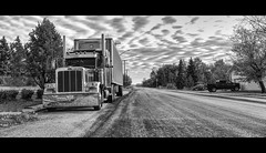 ...Honey! I'm Home!... (@VanveenJF) Tags: peterbilt truck semi alberta canada kanada travels province north rural zeiss 35mm bw road street lonely sony remote urban travelling