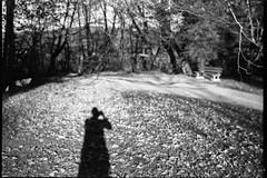 Plitvice Lakes Selfie (Koprek) Tags: fuji 6x9 ilford ilfordfilm delta 400 plitvice lakes selfie fujigw690ii autumn
