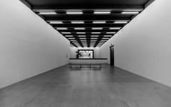 in an empty room (rainerralph) Tags: architecture symmetry architektur highkey fe401224g blackandwhite sony wideangle bauhaus schwarzweiss symetrie neuesbauhausmuseum a7r3