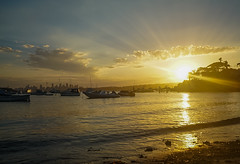 DSC01400 (Damir Govorcin Photography) Tags: sunset watsons bay sydney boats water clouds sky golden hour natural light sony a7rii zeiss 1635mm wide angle landscape