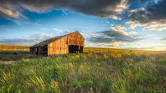 Thinking of Brighter Days (Chris Lakoduk) Tags: barn abandoned beautiful light grass field spring sky decay photography rural landscape