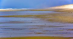 La plage était déserte (Ciceruacchio) Tags: beach plage spiaggia sea mer mare lowtide maréebasse bassamarea ocean oceano jacquesbrel atlanticcoast côteatlantique costaatlantica nouvelleaquitaine france francia frankreich nikon