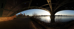 2020 01 16 Under the Bridge Wings -Mainz Kastell am Rhein - 11 (Mister-Mastro) Tags: rhein mainz water panorama city