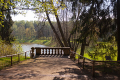 Pavlovsk park (VladimirTro) Tags: россия санктпетербург парк павловск природа russia russian saintpetersburg pavlovsk summer green tree canon5dmii ef352is nature park water river