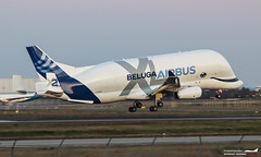 Airbus A330-743L Beluga XL F-GXLH (Florian Roussel) Tags: airbus a330743l beluga xl fgxlh a330 a337