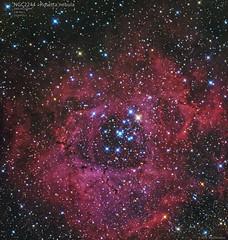 NGC2244-Rosetta-136min (bdeclerc) Tags: astronomy astro astrophotography astrometrydotnet:id=nova3880052 astrometrydotnet:status=solved