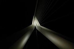 Erasmus Bridge@night (maxlak62) Tags: lumix city leica s1r night erasmus bridge rotterdam