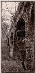 Hidden in the Woods (iainmerchant) Tags: england art unitedkingdom coalville bw monochrome landscape lumix photography landscapes leicestershire grace panasonic photooftheday picoftheday bridge ruins railway priory dieu