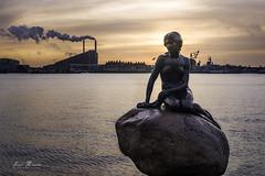 Den lille havfrue (H.M.MURDOCK) Tags: sirenita copenhegue mar agua estatua cielo color paisajes nikon d610