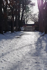 Watch your step (しまむー) Tags: pentax k30 smc dal da 1850mm 2875mm f456 dc wr re northern tohoku round trip 北東北 北海道&東日本パス