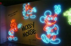Mickey Mouse (Past Our Means) Tags: kodak kodakportra 800 film filmisnotdead filmphotography kodakfilm portra800 portra canon ae1 canonae1 35mm 28mm mickey mouse neon ny newyorkcity lowlightphotography travel iconla istillshootfilm analog analogue museum disney