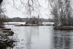 Pirita jõgi (Jaan Keinaste) Tags: pentax k3 pentaxk3 eesti estonia loodus nature vaskjala piritajõgi jõgi river vesi water smcpentaxamacro2850