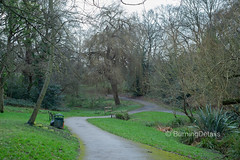 Maryon Wilson Park (Burning Details) Tags: park london pastoral trees leaves green grass path branches winding