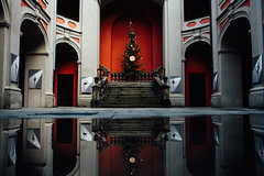 Lets dance! (ewitsoe) Tags: buses mpk nikon poznan street trams winter erikwitsoe balletschool reflection puddle interior symmetry red grand tree christmas stairs