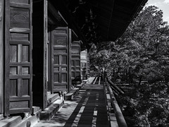 Temple doors (Tim Ravenscroft) Tags: temple doors walkway wood blackandwhite monochrome japan architecture japanese blackwhite kyoto shinnyodo