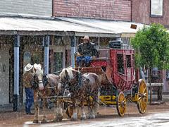 Downpour at the saloon (juanita nicholson) Tags: rain downpour shower weather sagecouach horses saloon cowboy wildwest