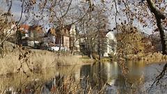 Am Burgsee in Bad Salzungen (Thüringen) (Kurt Hollstein) Tags: bad salzungen thüringen burgsee draussen sonnenschein rundgang wandern