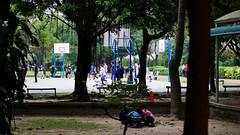 P1060141 2020-01-11 17_14_19 (宗峰) Tags: 板橋 環河公園 panasonic lumix dmc gx85 leica dg nocticron 425mm f12