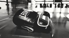 Boxing gloves (passilongo.david) Tags: gloves boxe pugilato ring black leone