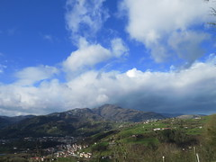 En Tolosaldea (eitb.eus) Tags: eitbcom 30187 g1 tiemponaturaleza tiempon2020 invierno gipuzkoa leaburu eduardorecaldeinvierno2020