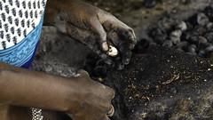 Noix de Cajous à Chettinad en Inde du Sud (richard.hebert68) Tags: sony 24240mm inde