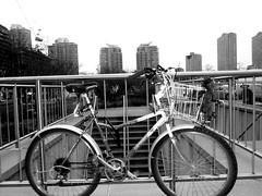 Happy Fence Friday --- (Mr. Happy Face - Peace :)) Tags: toronto cylcing mrhappyface jimmyb skyline citycenter explore cycle bicycle ontario canada skylines architecture buildings acertainsmile facebook instagram twitter flickrfriday flickrfriends black white bw