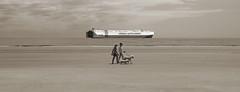 Tranquility by the Sea (Jon Scherff) Tags: peaceful sea ocean beach tranquility quiet horizontal walking dogs ship cargoship sepia horizon minimalism center exercise vastness