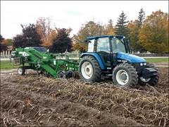 Potato harvester (msuanrc) Tags: potato potatoes harvest harvesting harvester tractor field agriculture farm farming combine