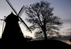 Wind mill at dusk   Built in 1841 (Ingrid Friis Photo) Tags: builtin1841 byggd1841 vindmölla windmill arlöv scania skåne sweden träd tree