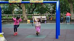P1060173 2020-01-11 17_24_47 (宗峰) Tags: 板橋 環河公園 panasonic lumix dmc gx85 leica dg nocticron 425mm f12