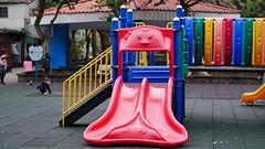 P1060147 2020-01-11 17_16_29 (宗峰) Tags: 板橋 環河公園 panasonic lumix dmc gx85 leica dg nocticron 425mm f12
