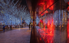 Keyakizaka,Roppongi (yasky0786) Tags: roppongi illumination tokyo happyplanet city night light street asiafavorites