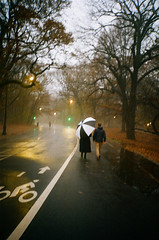 A Walk In The Rain (Gabriella Ollandini) Tags: analog analogue analogica rain mist umbrella couple pair romantic stroll walk dusk night evening istillshootfilm filmisnotdead filmphotography filmcamera autumn winter fall 35mm 800 brooklyn nyc newyork softfocus people streetphotography humans streetlights lomolca park prospectpark olmsted vaux lovers romance lca lomo cinematic
