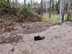 One men's dress shoe loafer outdoors (abandoned.shoes) Tags: abandoned shoes mens dress loafers