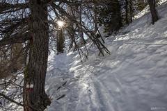 00274 (GertPq1) Tags: adventure alpen alps berge daheimindenbergen dolomiten gertpöder hiking merano mountains nature outdoor pöder schnee snow southtyrol südtirol tourism travel ulten ultental urlaub wanderlust wandern wanderung winter