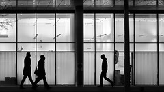 afterwork (heinzkren) Tags: schwarzweis blackandwhite monochrome urban candid men silhouette wien vienna office windows street streetphotogrphy eosr canonr people winter city