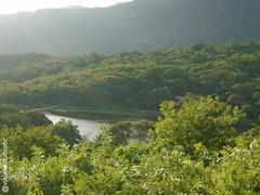 Maracanaú - Vista da Reserva de Santo Antônio do Pitaguari (Sergio Falcetti) Tags: brasil ce ceará cidade maracanaú viagem vista