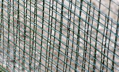 Grid (XoMEoX) Tags: grid gitter zaun fence nikon d5200 abstract abstrakt regular repetition wiederholung draht metal metall eingezäunt fenced minimal minimalistic minimalistisch