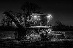 Working late. (bainebiker) Tags: agriculture beeteater canonef70200f28usm farming field lights monochrome nightwork sugarbeetmachinery vervaet lowlight trees machinery