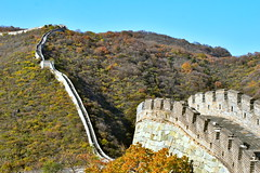 Great Wall of China steep hiking path up beautifully autumn colored mountains, Mutianyu, China (German Vogel) Tags: stairs steps curve steep hikingtrail path watchtower nationalsecurity security asia travel tourism traveldestinations touristattractions famousplace eastasia china beijing peking capitalcities locallandmark nationallandmark chineseculture huairou mutianyu greatwallofchina greatwall unescoworldheritagesite autumn autumnseason fallseason historicalsite history mountains defense defensivewall wall protection