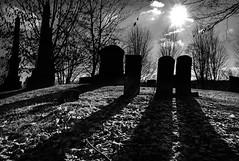 Short Circuit (drei88) Tags: shortcircuit alien harsh barren desolate contrast shadow light life death boundary hiding witness energy atmosphere racing learning forlorn grim stark cemetery brilliant memory vivid time cycles passage seasons