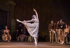 Natalia Osipova as Tatiana in Onegin, The Royal Ballet ©2020 ROH. Photograph by Tristram Kenton (Royal Opera House Covent Garden) Tags: onegin roh royalballet byjohncranko production productionphoto nataliaosipova