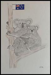 L'Australie ...après le feu, la pluie ... (murielle1957) Tags: dessin crayon animaux animals nature australie solidarité