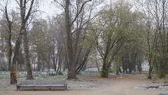 (Farm Speed Racer) Tags: november 2016 bench park mist autumn fall grey silence cold germany loneliness