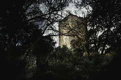 Ruin tower of Casenove (Bruno Casals) Tags: casenove tower rui catalunya payscatalan pyrénéesorientales ille