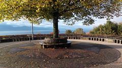 Bel automne à Lausanne (8pl) Tags: place hauteurs arbre montagnes vue bleu cielbleu matin automne extérieur lausanne suisse feuilles