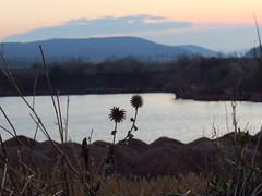 über der Kiesgrube (germancute ***) Tags: nature landscape landschaft outdoor thuringia thüringen