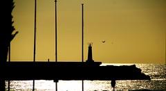 Contraluz en el puerto (portalealba) Tags: lacaleta caletadevelez portalealba canon eos1300d axarquía málaga andalucía españa spain amanecer sunrise torredelmar