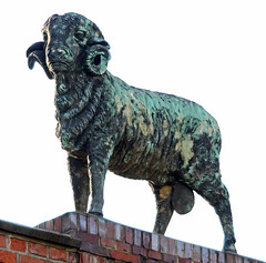 Merino sheep sculpture (Schwanzus_Longus) Tags: delmenhorst german germany old classic vintage house building factory gatehouse gate nordwolle historic brick wool carding spinning mill merino sheep sculpture
